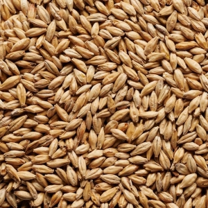 Joe White Dark Munich Malt x 25kg