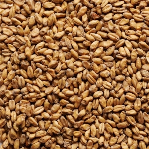 Joe White Wheat Malt x 25kg