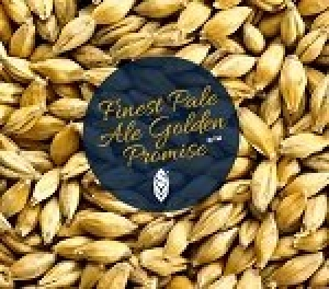 Simpsons Finest Pale Ale Golden Promise® x 25Kg